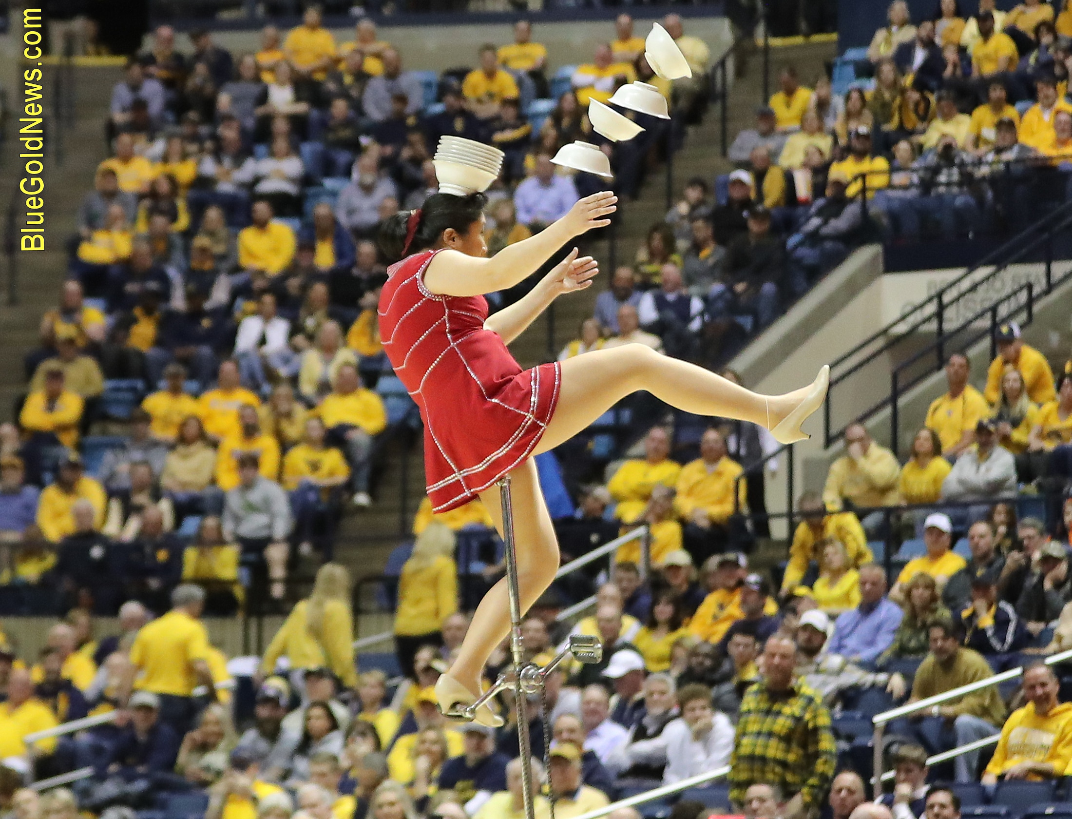 The Red Panda's 100% success rate dwarfed that of the Mountaineers' shooting percentage from the field