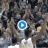 WATCH: WVU Plays With Same Hardworking Mentality of its State