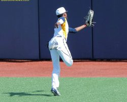 Record Draft Numbers For WVU Baseball, And What It Means For The Program