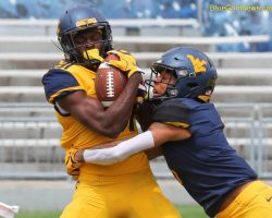 Photo Gallery I: West Virginia Mountaineers 2019 Gold-Blue Game