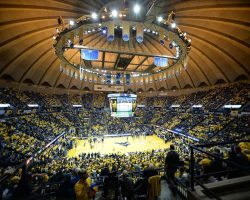 WVU Basketball Team Tips Things Off With Friday's Gold-Blue Debut