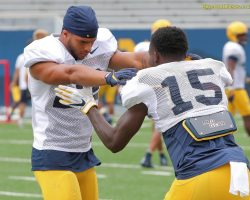Photo Gallery West Virginia Mountaineers  2019 Fall Football Camp VIII