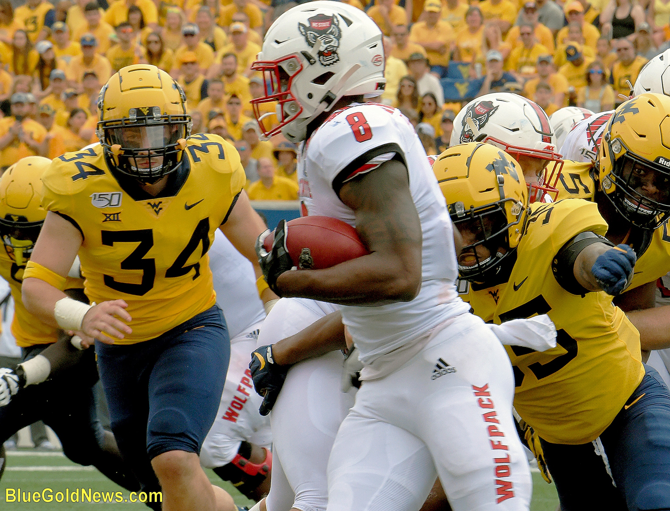 West Virginia linebacker Shea Campbell (34) zeroes in on N.C. State's Ricky Person (8) as Josh Chandler (35) pursues