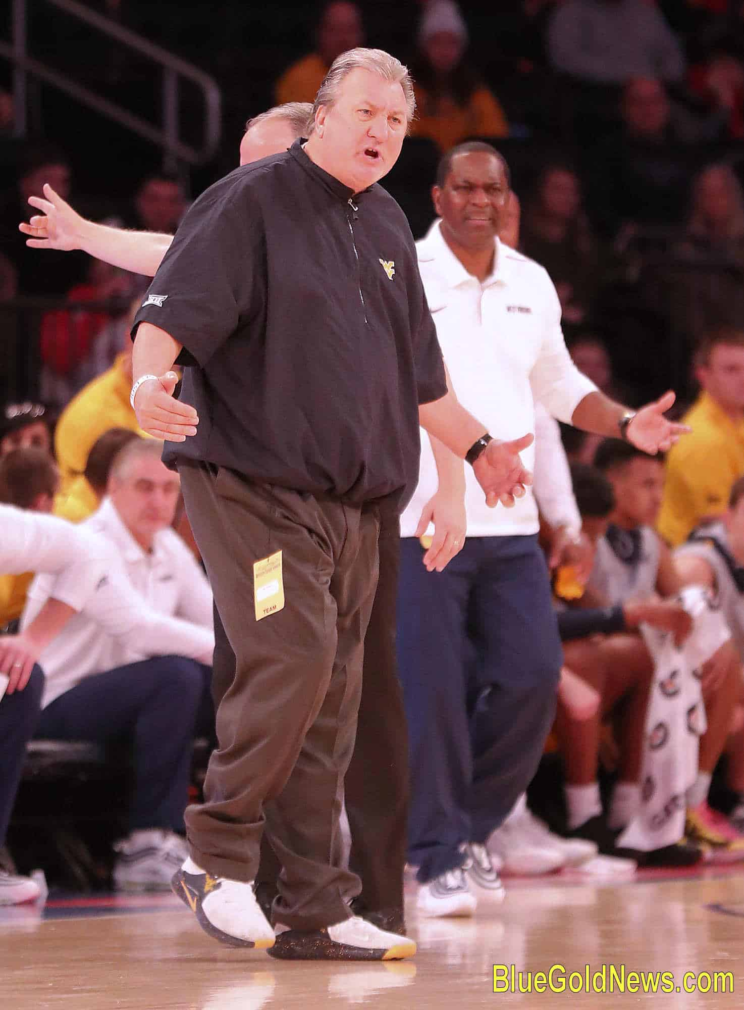 West Virginia coaches Bob Huggins (left) and Larry Harrison (back, right) show equal amounts of frustration and vexation after another WVU turnover